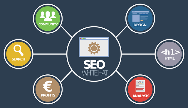 seo analýza on-line 2